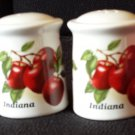 Indiana Souvenir Salt and Pepper Shakers-White with Red Apples