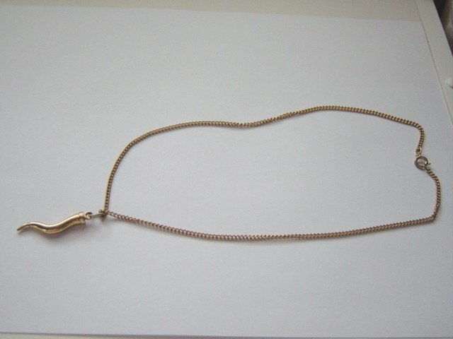Gold Tone 9.5 Inch Chain and Horn Pendant Necklace #900396