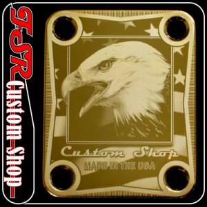 (G0016) GOLD EAGLE/USA FLAG NECK PLATE fits fender stratocaster