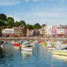 The Harbour, Torquay Devon Postcard  Boats