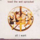 Toad The Wet Sprocket - All I Want - UK  CD Single