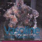 Stone Temple Pilots - Vasoline - UK  CD Single