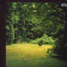 Eska - The Case Wrapped Up - UK  CD Single