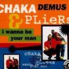 Chaka Demus & Pliers - I Wanna Be Your Man - UK CD Single