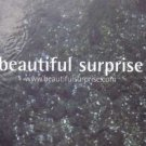 Barclay/Smith - Beautiful Surprise - UK Promo CD Single