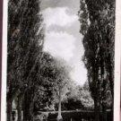 Promenade De Verdun, Purley Postcard 1966  Archie Handford Ltd