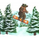 Bear Snowboarding - 8 box set