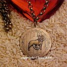 Boston Terrier Photo Locket Necklace ...Jewelry for Dog Lovers