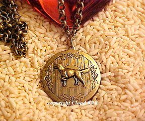 Setter Photo Locket Necklace ( Irish English Gordon Setter ) Jewelry for Dog Lovers