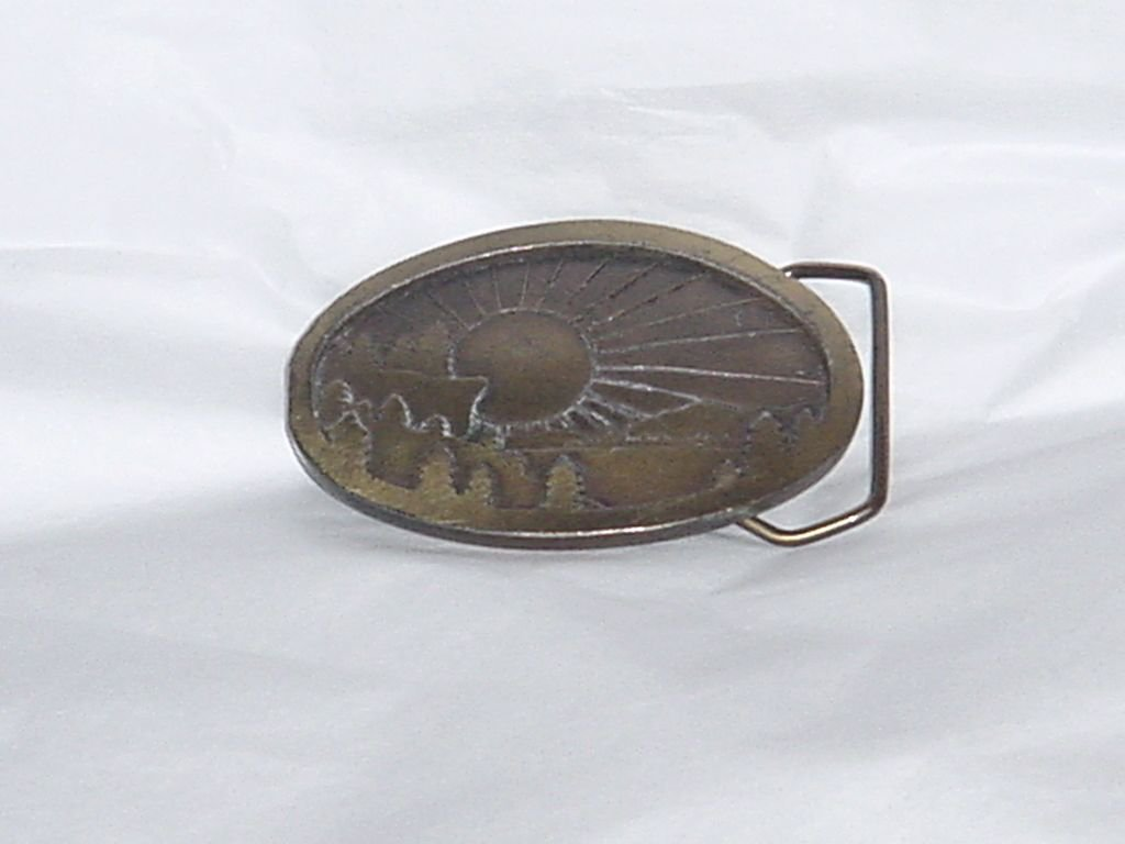 Vintage 1977 Indiana Metal Craft 3D Brass Belt Buckle Sun Rising No. 160
