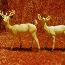 buck and doe figure's