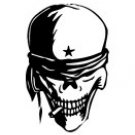 Skull Vinyl Auto Car Truck Window Decal Sticker #sku-002