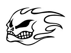 No Fear Flames Skull Vinyl Auto Car Truck Window Decal Sticker #sku-019