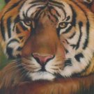 Bob Ross TIGER How-to Paint Pattern Packet Bonus Booklet