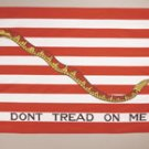Dont Treat on Me First Navy Jack  THE Flag Company