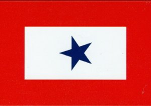 Blue Star Mom Military Service Flag 3 x 5'