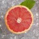 Sweet Tropical Lip (Grapefruit)