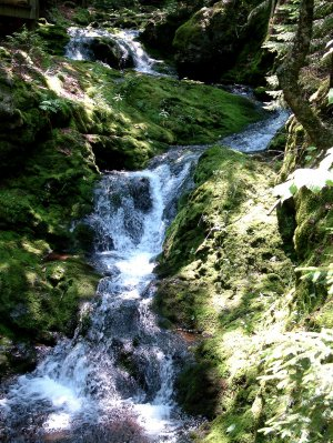 Fuller Falls, Fundy National Park, New Brunswick, CA 02