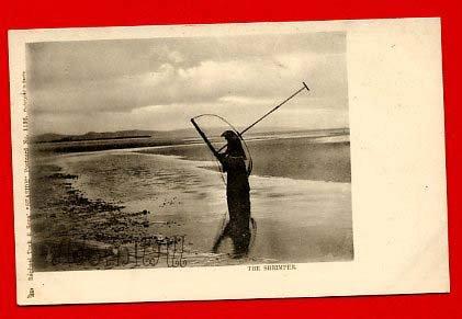 Vintage Postcard - Raphael Tuck - The Seaside Shrimper 78