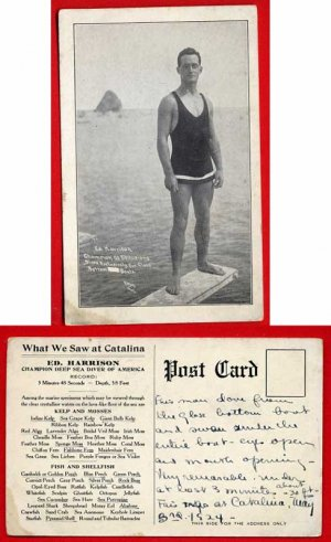 Vintage Postcard - c1916 Catalina CA Dive Champion - man in hot swimsuit! 878