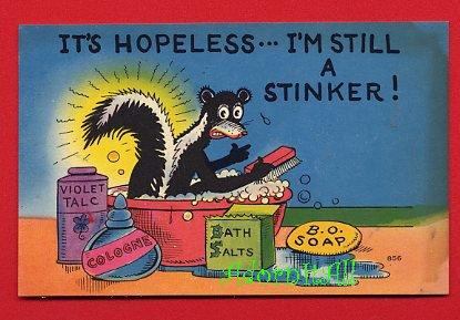 Vintage comic Postcard - Funny Stinker - skunk pun card 946