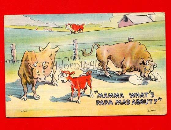 Vintage Postcard - Very Angry Bull Comic card by MWM 843