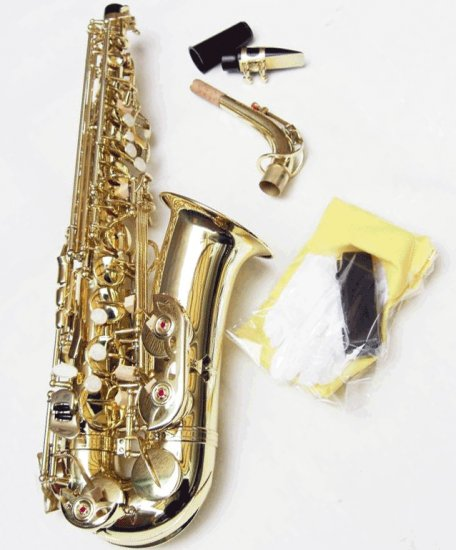 Beautiful NEW Alto Saxophone
