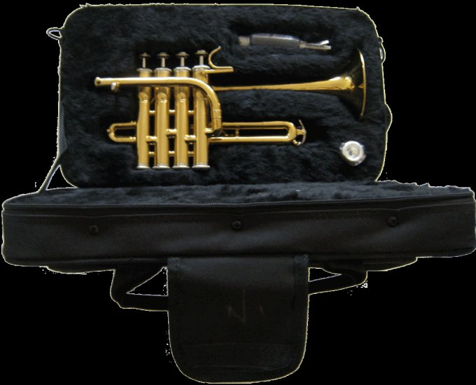 Beautiful NEW Piccolo Trumpet