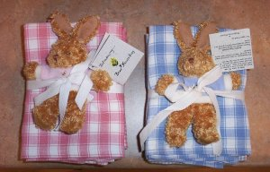 Bear Necessities - Gift Towels/Burp Cloths