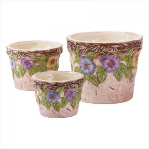 Morning Glory Flower Pot Set - D