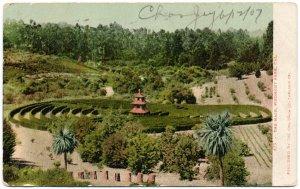 The Maze, Piedmont Park, CA c1907
