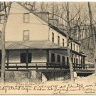 Mineral Springs Hotel, Reading, PA c1905