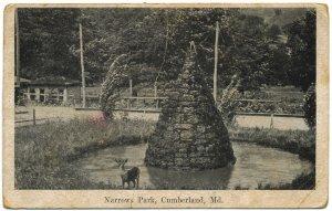 Narrows Park, Cumberland, MD c1907 Postcard