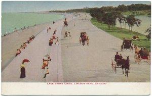 Lake Shore Drive, Lincoln Park, Chicago c1910s Postcard
