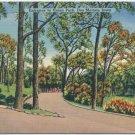 Entrace to Union Park, Des Moines, IA Postcard