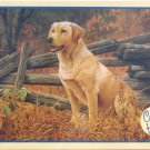 Cobble Hill MAN'S BEST FRIEND 500 pc New Jigsaw Puzzle Dogs Jerry Gadamus