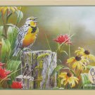 Cobble Hill MEADOWLARK MORNING 1000 pc New Jigsaw Puzzle Susan Bourdet Birds