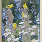 Cobble Hill GOLDFINCH QUARTET 500 pc Jigsaw Puzzle Susan Bourdet