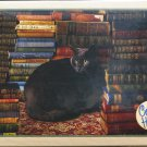 Cobble Hill LIBRARY CAT 1000 pc Jigsaw Puzzle
