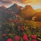 Clemontoni AS IT FADES 1000 pc Jigsaw Puzzle Sunset