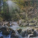 Castorland FOREST STREAM 2000 pc Jigsaw Puzzle Landscape New