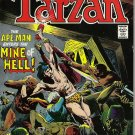 TARZAN COMIC COLLECTION  DC AND MAVEL COMICS