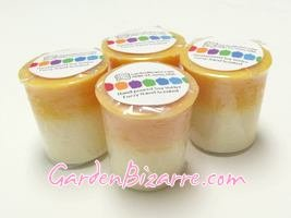 Soy Votive Candle - Set of 4 - Fuzzy Navel Scented