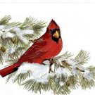 Red Cardinal on Pine Bough Greeting Card