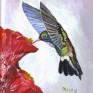 Thinking-of-You Hummingbird Greeting Card