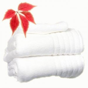 Laundry Delivery Service for Clinic Towels Wash & Dry