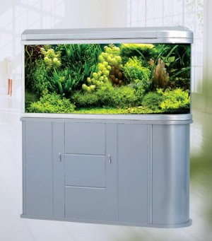 Triton Authentic 100 Gallon Designer Round Aquarium