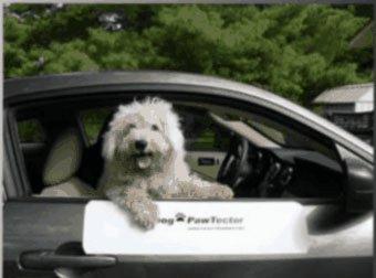 DogPawTector