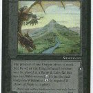 Middle Earth Dragon's Desolation Uncommon Game Card