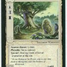 Middle Earth Rhosgobel Wizards Limited Fixed Game Card